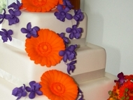 Wedding Cake:Wedding Cake Variety in Photos
